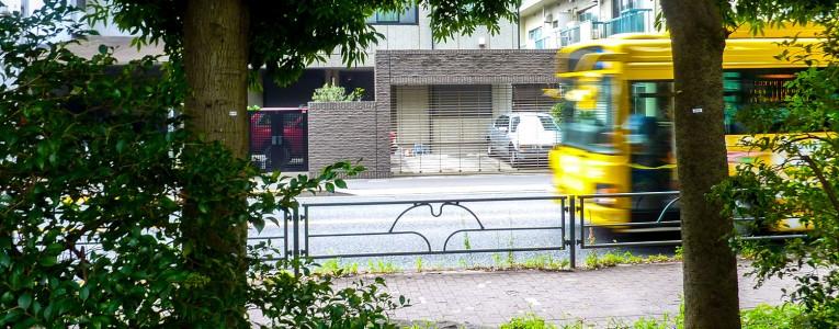 Chat Bus à tout vitesse