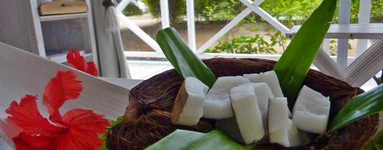 Noix de coco du jardin