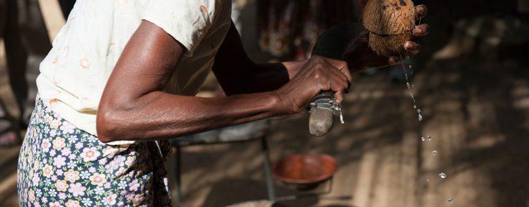 Technique pour couper la coco dans la région d'Habarana