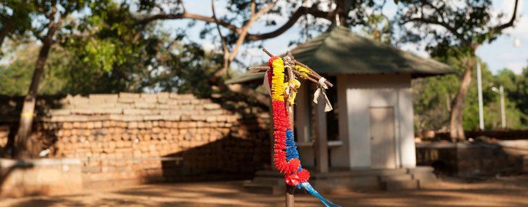 La Bodhi d'Anuradhapura
