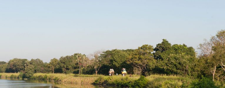 Promenade à dos d'éléphant vers Habarana