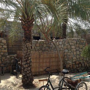 Extérieur de la villa avec vélo