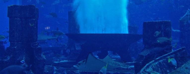 Couloir de l'Atlantis vers le Nobu