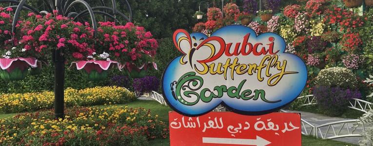 Dubaï Butterfly Garden