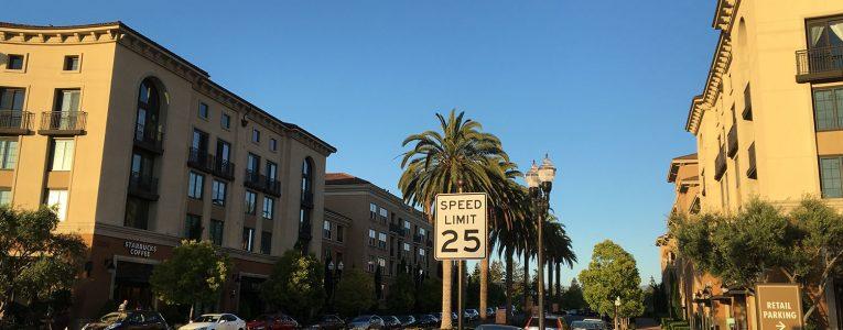 Palmiers le long de la route à San José