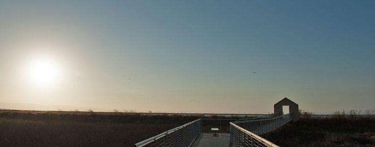 Coucher de soleil près du parking à Alviso Parc